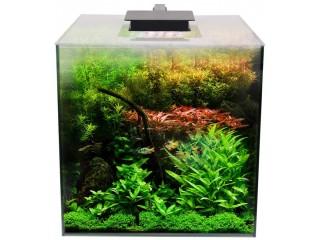 Fluval Complete Flora Planted 14.5 Gallon Aquarium Kit