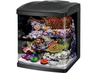 Coralife LED BioCube Aquarium Kit 16-Gallons